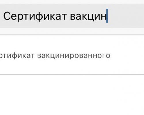 Как получить сертификат о вакцинации и QR-код на сайте Госуслуг в Санкт-Петербурге. Инструкция